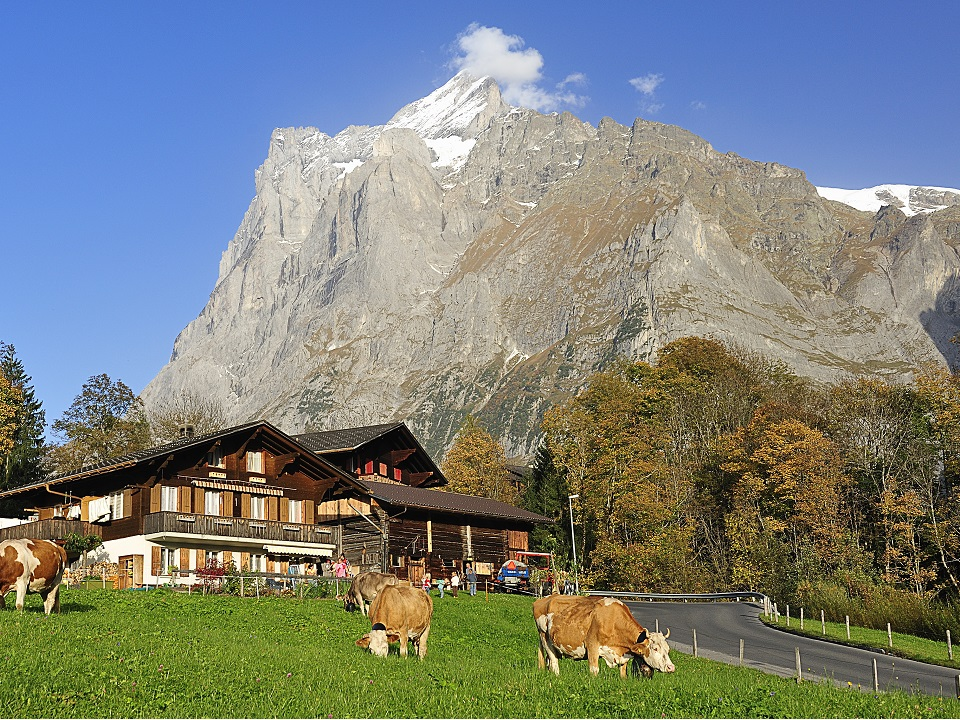 Scenery from the Swiss Alpes